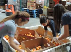 Women Leadership Forum's Young Women Leaders volunteer at FIND Food Bank