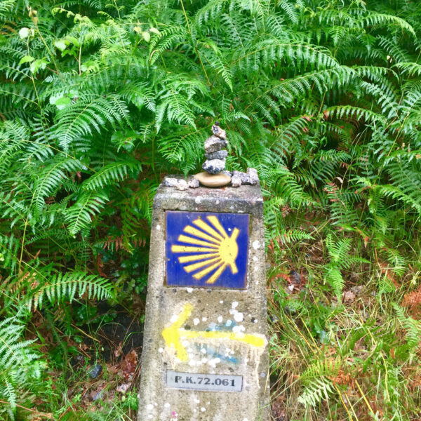 Markers along the well-traveled path help guide travelers.